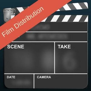 Camera Slate. Film Distribution. Your Film Ran The Film Festival Circuit, Now What?